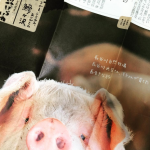 自然熟成豚 青森・長谷川自然牧場 青空レストラン お取り寄せ じゃがいもなど自然由来の餌を食べさせ10ヶ月熟成させた熟成肉!
