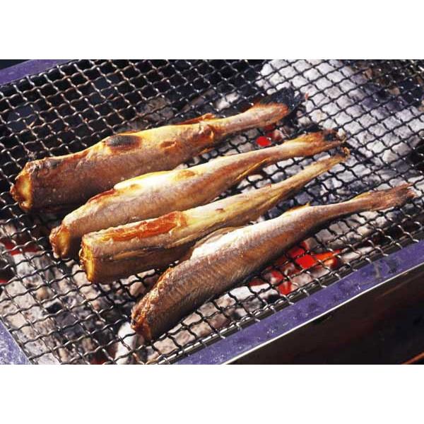 青空レストラン コマイ(氷下魚) お取り寄せ こまいっ子しょうゆ味 通販 コマイっ子丼 レシピ 北海道 根室市/風蓮湖 2月25日