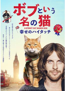 ボブという名の猫 原作本のあらすじ!上映画館は?アンビリバボーで紹介